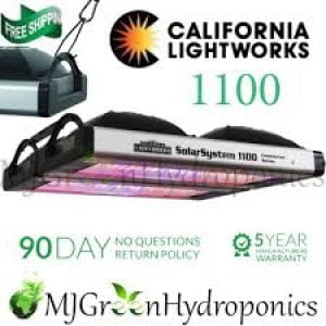 California lightworks 550